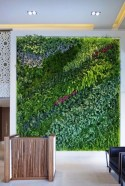 Cool Indoor Vertical Garden Design Ideas 38